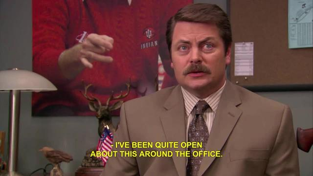 Parks and Recreation: Role of Goverment