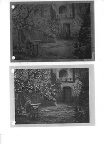 PHOTO: The Enchanted Cottage - Courtyard Composite
