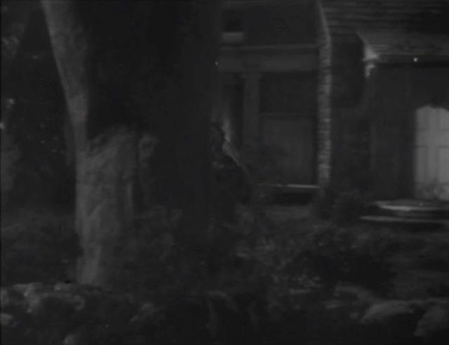 FILM: The Enchanted Cottage - Nighttime Seaside Rear Projection