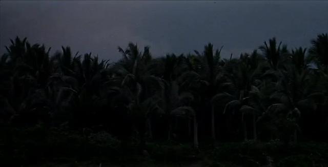 Apocalypse Now (1979): Opening
