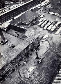 Aerial shot of Austin Street, Kew Gardens