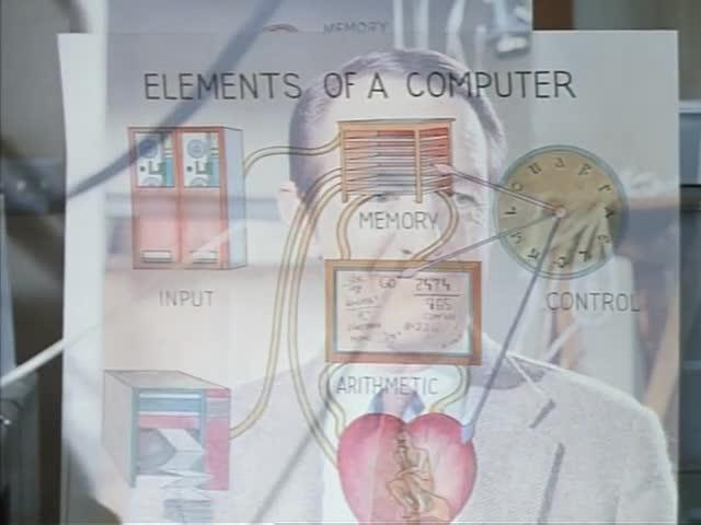 Biological metaphors are used to explain the functioning of a computer
