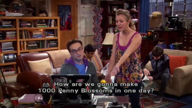 The Big Bang Theory -- Normal Good