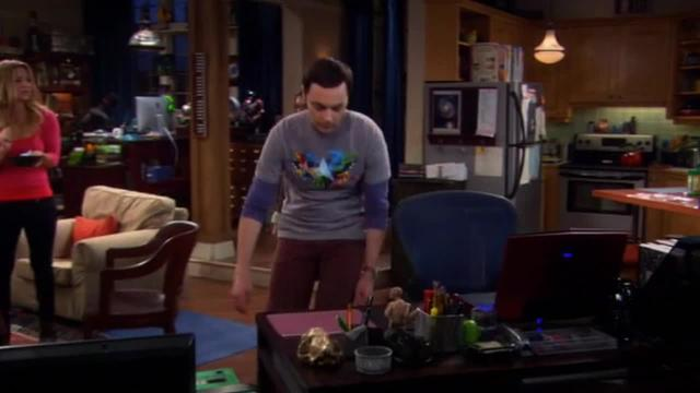 Big Bang Theory -- The Floppy Disk