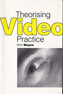 Theorising Video Practice book cover