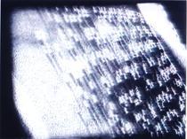 aletheia_braille