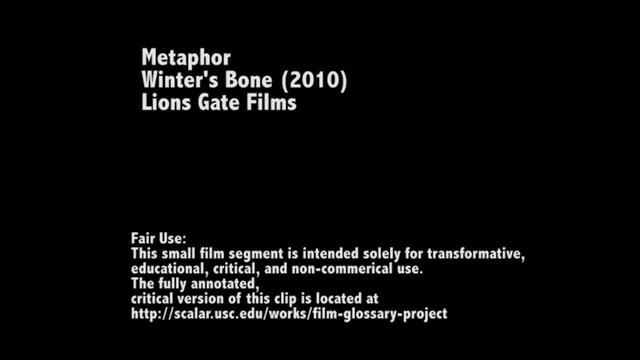 Metaphor in Winter's Bone