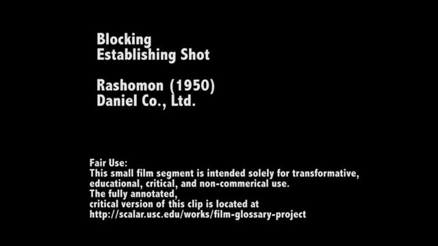 Blocking in Rashomon